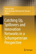 Catching Up, Spillovers and Innovation Networks in a Schumpeterian Perspective